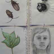 Student Drawings 2009 60