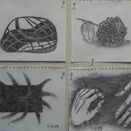 Student Drawings 2009 82